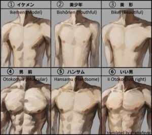 Male Body Types