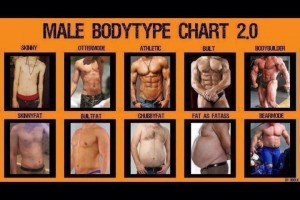 Ideal body type for a male?
