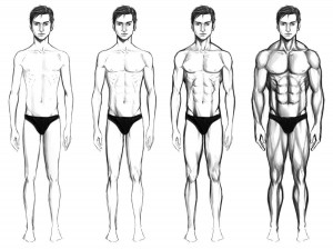 What is the Ideal Body Type that Girls Like?