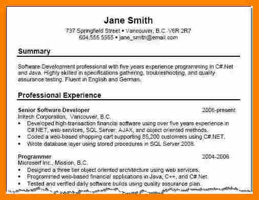 Nice Example Of Good Resume Summary Example Good Resume Template  What Is A Summary For A Resume