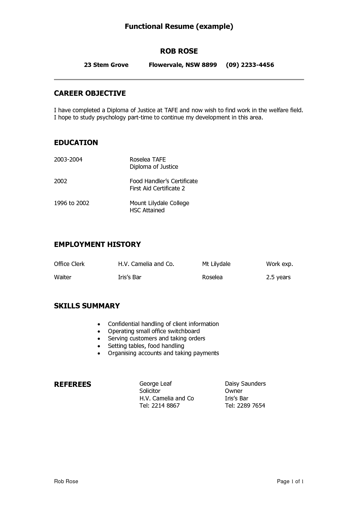 examples of summary on resume