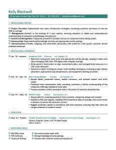 professional resume templates free download 21 word professional resume templates free download free free download resume template gfyork com nice free - Downloadable Resume Formats