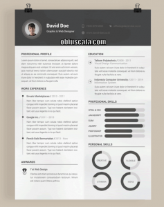 Resume Design Templates