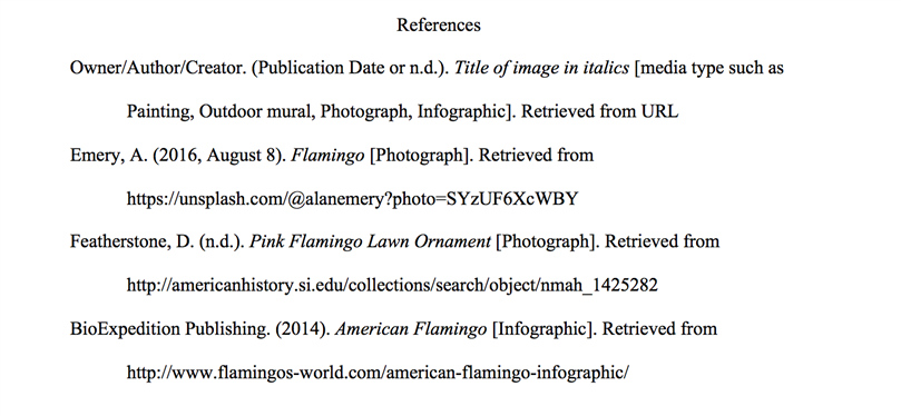 APA Reference Page