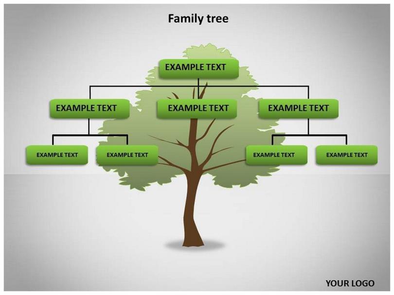 family tree examples templates