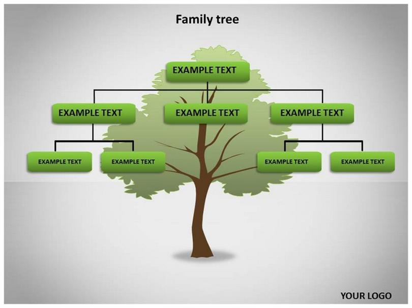 Family Tree Template on Blank Diagram Family Tree Chart