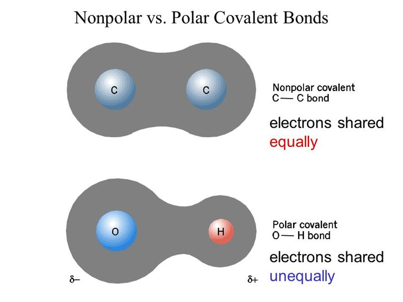 Strength Of Polar Covalent Bond
