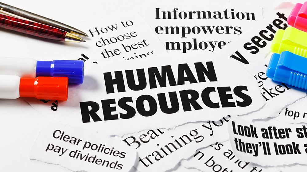 principles of human resources management essay Human resources management seems to be mostly good intentions and  in  principle, headquarters may be willing to let the divisions deal with their local  labor.
