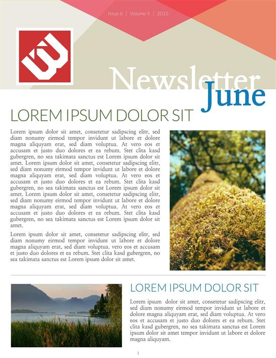 Best newsletter templates for Best paid blogger templates