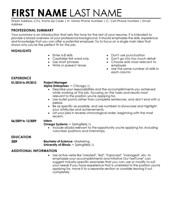 resume format examples - Additional Information On Resume
