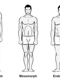 Guys Do You Know Your Body Shape?