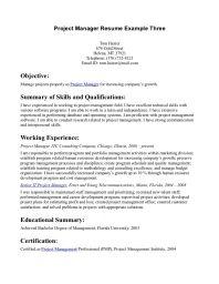 Career resume objective statement