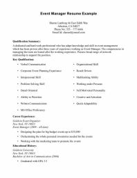 Resume Work Experience Sample