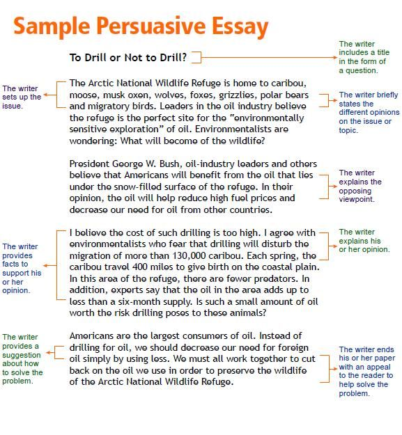 Argumentative sample essay