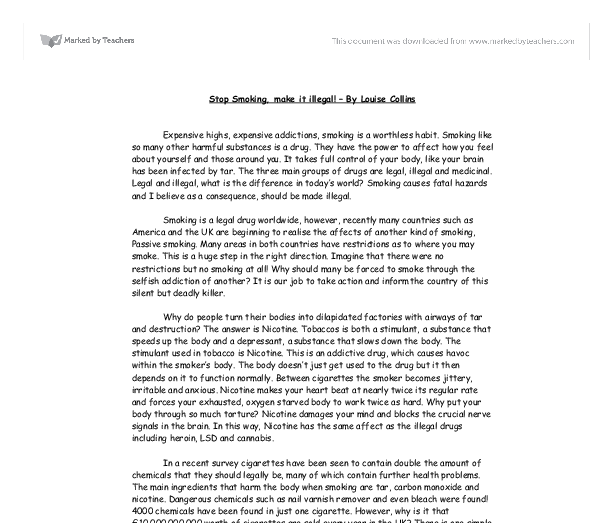 Informative speech essay examples