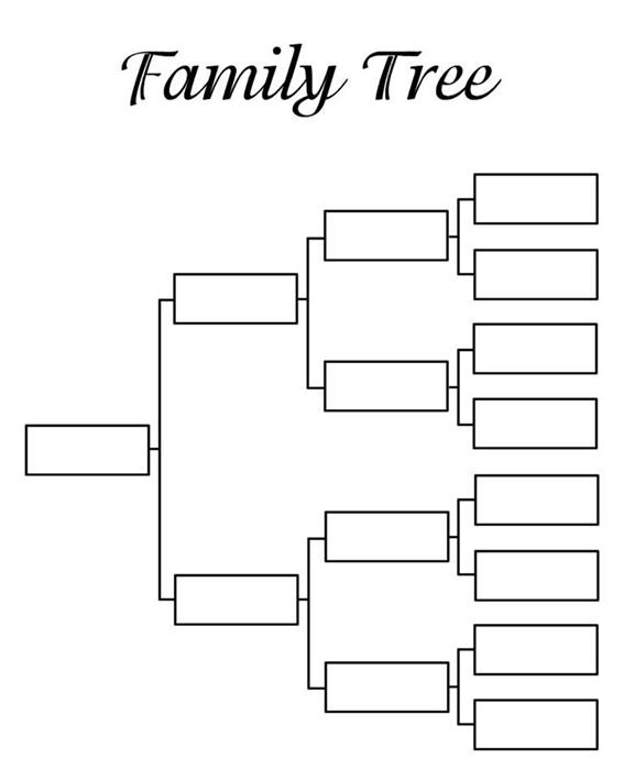 Where Can You Find A Family Tree Template
