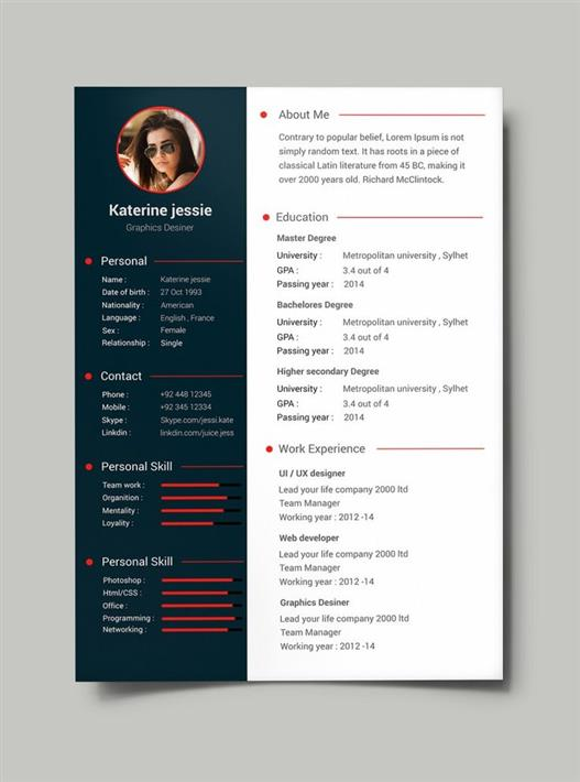 What is a CV Template?