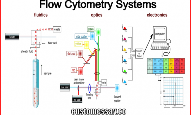Flow Cytometry Systems